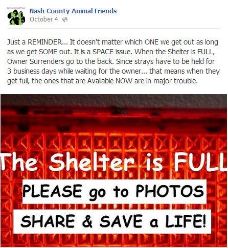 Shelter full